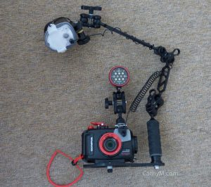 Olympus TG-4 Camera, Underwater Housing, Strobe and Video Light