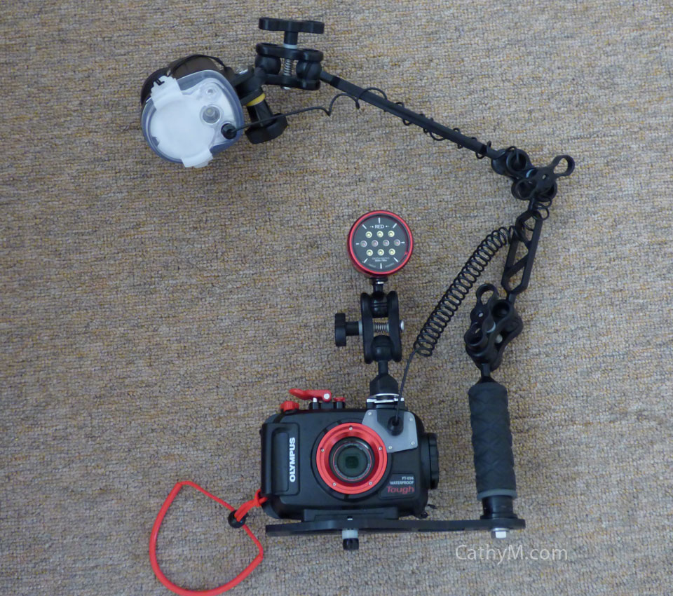 Olympus TG-4 with Underwater Housing, Strobe, Video Light